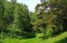 Пинский лесхоз