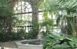 Зимний сад в Гомеле