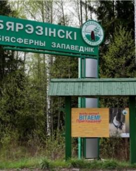 ГПУ «Березинский биосферный заповедник»