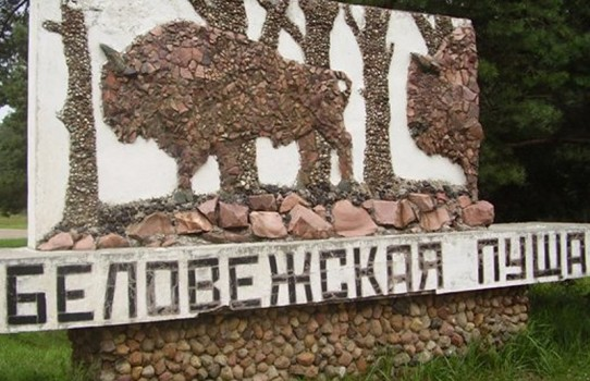 """Национальный парк """"Беловежская пуща"""""""