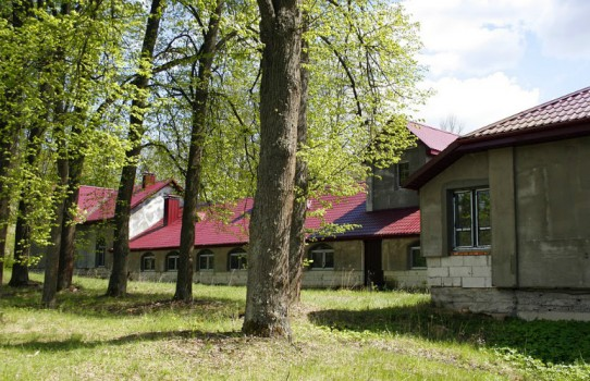 Дворец Бохвицей в Павлиново